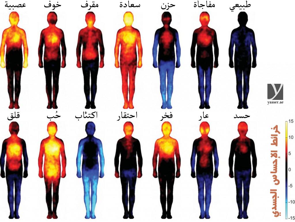 خرائط الاحساس الجسدي